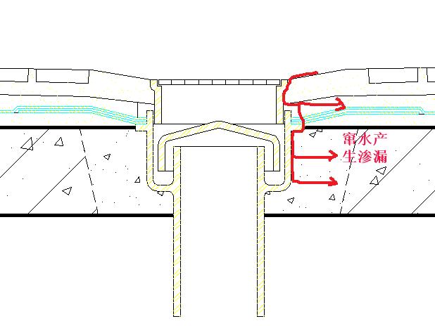 卫生间地漏窜水产生渗漏防水处理